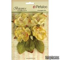 Набор объемных цветов Petaloo - Botanica Blooms x4 - Soft Yellow - ScrapUA.com
