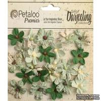 Набор цветов Petaloo - Printed Darjeeling Collection - Wild Mini Blossoms - Soft Green