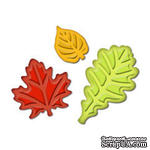 Лезвия от Spellbinders - Fall Leaves Punch Templates for Presto Punch, 3 шт