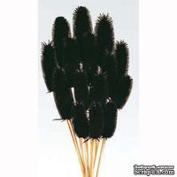 Колючки Кардо, цвет черный,  5 шт.