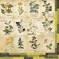 Карточки Botany summer (eng.), ТМ Фабрика Декору