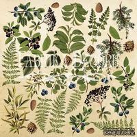 Лист для вырезания №2 Botany summer (eng.), ТМ Фабрика Декору