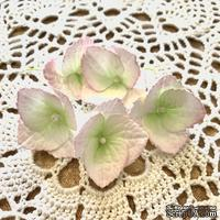 Гортензии из фоамирана с лепестками с зубчатым краем,  диаметр 35 мм, цвет белый с розовым, 5 шт.