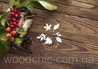 Чипборд Набор листья от WOODchic,  2.5 на 2.5см