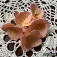 Гортензии из фоамирана с лепестками с зубчатым краем,  диаметр 35 мм, цвет персиковый, 5 шт.
