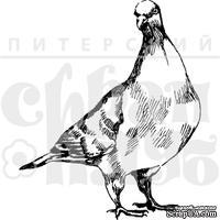 """Акриловые штампы дизайна Елены Виноградовой """"Смотрящий голубь"""""""