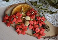 Набор цветов от WOODchic - Пуансеттия 101  от WOODchic