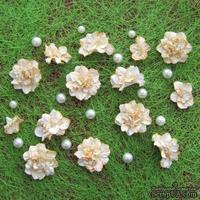Азалия, бумажные цветы ручной работы, 7 штук, цвет бело-оранжевый