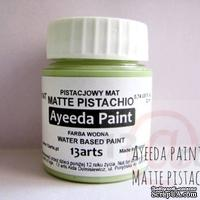 Краска 13arts - Ayeeda Paint - Matte Pistachio