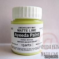 Краска 13arts - Ayeeda Paint - Matte Lime