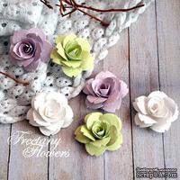 Набор цветовFreetanyFlowers–Весна