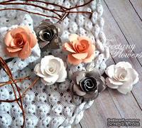 Набор цветовFreetanyFlowers–Чайная роза