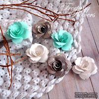 Набор цветовFreetanyFlowers–Аквамарин