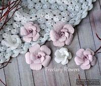 Набор цветов Freetany Flowers – Baby Girl