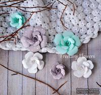 Набор цветов Freetany Flowers – Dreams