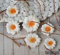 Набор цветов Freetany Flowers – Ромашки