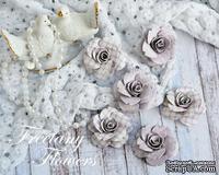 Набор цветов Freetany Flowers – Лаванда