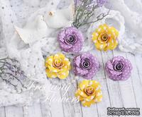 Набор цветов Freetany Flowers – Крокусы