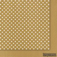 Двусторонний лист бумаги от Galeria Papieru - Przesyłka Ekspresowa 01, 30,5x30,5см - ScrapUA.com