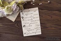Чипборд от WOODchic - Набор надписей для детского альбома для девочки (рус. язык)