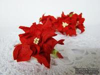 Гардения, 5 см, цвет красный, 1 шт.