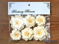Набор цветов Freetany Flowers – Капучино