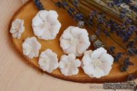 Набор от WOODchic - Бумажные цветы 054 от WOODchic - ScrapUA.com