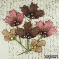 ЦЕНА СНИЖЕНА! Набор веточек омелы Prima - Antique Mistletoe - raspberry mocha