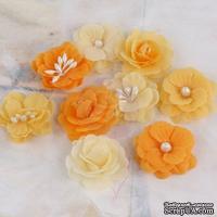 ЦЕНА СНИЖЕНА! Набор цветов Prima - Lady Godivas - Orange Ice