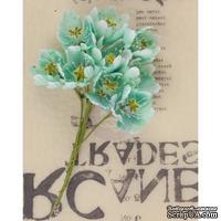 Набор цветов Prima - Lady Bird - Turquoise