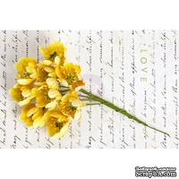 Набор цветов Prima - Divine Flower Stem - Yellow