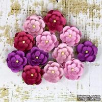 Набор цветов Prima - Avante - Berry