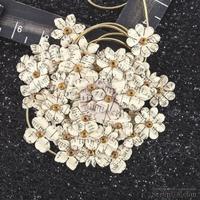 ЦЕНА СНИЖЕНА! Набор цветов Prima - Hillsboro Collection - Oatmeal