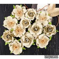 Набор цветов Prima - Coy Flowers Adelle