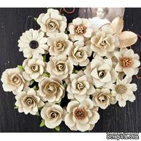 Набор цветов Prima - Coy Flowers Walden