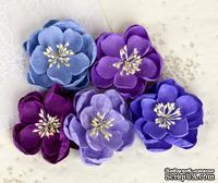Набор цветов от Prima -  Giselle - Plum, 5 шт.