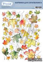 """Лист """"Кленовые листья"""", дизайн Елены Виноградовой, 19,5*25 см, 1 шт., NK013"""
