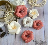Набор цветов Freetany Flowers – Любовь-морковь