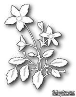 Ножи  от  Memory  Box  -  DIES  -  Lenora  Bloom