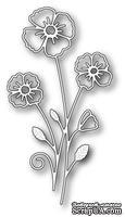 Ножи  от  Memory  Box  -  DIES  -Splendid  Clarkia