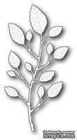 Ножи  от  Memory  Box  -  DIES  -  Botanical  Stem