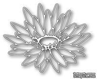 Ножи  от  Memory  Box  -  DIES  -Blooming  Lotus  Outline