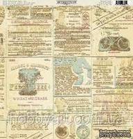 Лист бумаги от Authentique - Splendid - Renown, 30,5x30,5см - ScrapUA.com