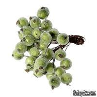 Ягодки круглые в осыпке, зеленые, 16.0 см х 12 мм, по 2 шт. на стебельке, всего 40шт.