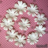 Декоративные цветы, цвет слоновой кости, 38 мм, 10 шт