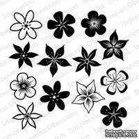 Акриловые штампы от Impression Obsession - Bunch of Blossoms -Букет цветов