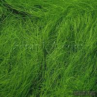 Сизаль натуральный, цвет светло-оливковый, 40 г