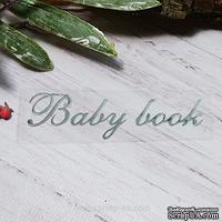 "Термонадпись ""Baby Book"" №1, серебро"