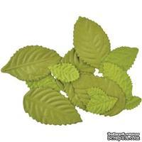 Листики от Kaisercraft - Leaves Assorted, цвет зеленый,15 шт.