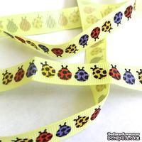 Лента Eyelet Outlet - LadyBug Ribbon, ширина 15 мм, длина 90 см - ScrapUA.com